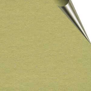 Super Size Stage Paper 2.72m x 11m Tropical Green