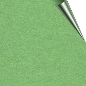 Super Size Stage Paper 2.72m x 11m Summer Green