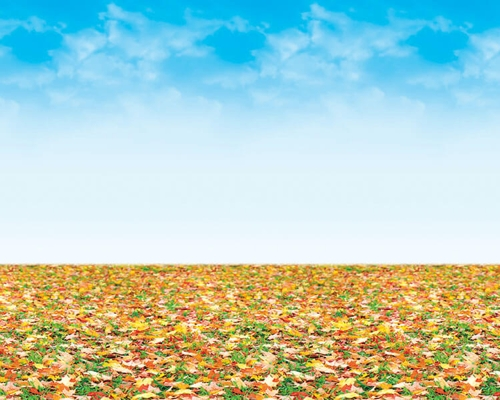 Autumn Horizon Fadeless Design Display Paper, 3.6m