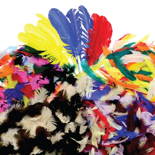 Feathers Classpack